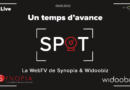 30 mars 2021 – SPOT ! la WebTV des Jeunes de Synopia avec Xavier Guézou !